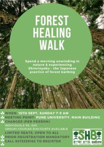 Forest Healing Walk